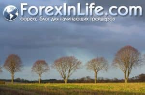 Торговля деривативами у брокера форекс
